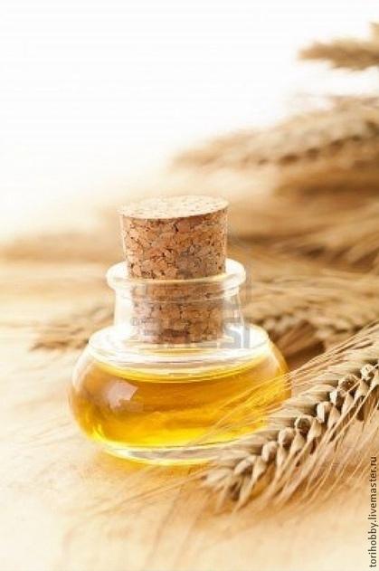 Как сделать из пшеницы масло
